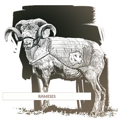 Rameses UNC Chapel Hill mascot